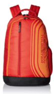 American Tourister Casper Red Casual Backpack