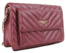 Get upto 80% discount on branded Bags and Clutches