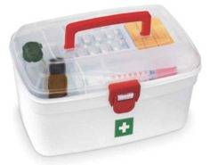 Utility and Medical Box by Milton at Rs.179 only